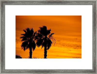 Framed Print featuring the photograph Burning Palms by Kathy Ponce