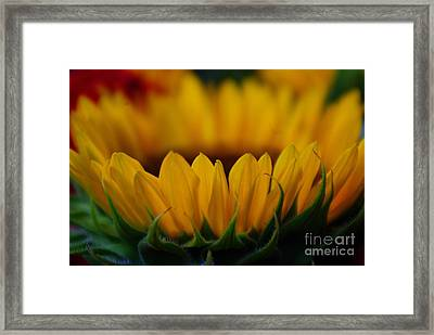 Framed Print featuring the photograph Burning Ring Of Fire by John S