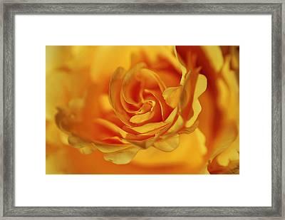 Burning Yellow Framed Print