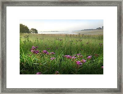Burning Off The Morning Fog Framed Print
