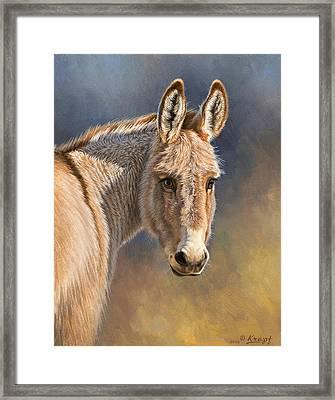 Burro Framed Print by Paul Krapf