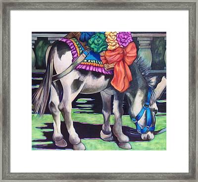 Burro Framed Print