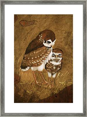 Burrowing Owls Framed Print by Richard Hinger