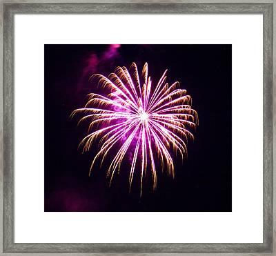 4th Of July Fireworks 25 Framed Print by Howard Tenke