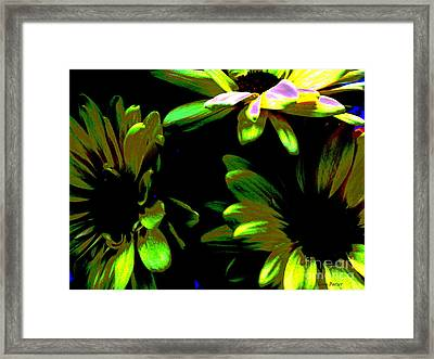 Burst Framed Print by Greg Patzer