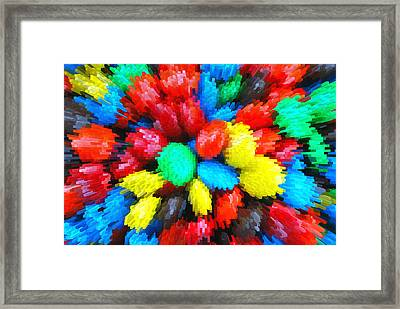 Burst Framed Print by Linda Segerson