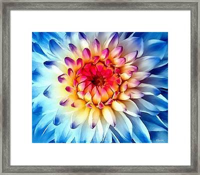 Burst Of Beauty Framed Print by Helen Stapleton