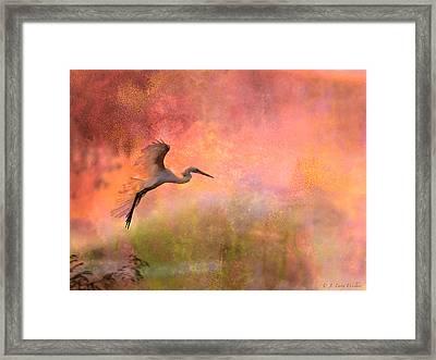 Burst Of Color Egret Framed Print by J Larry Walker