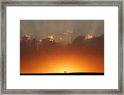 Burst Of Light Framed Print