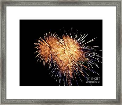 Framed Print featuring the photograph Bursting With Love by Eve Spring