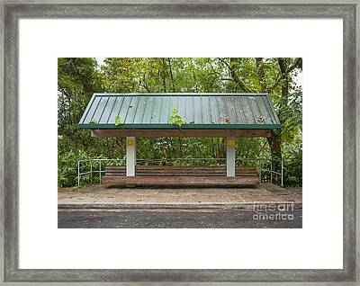 Bus Stop Bench In The Rainforest  Framed Print