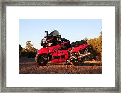 Framed Print featuring the photograph Busa by David S Reynolds