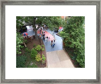 Busch Gardens - 12123 Framed Print by DC Photographer