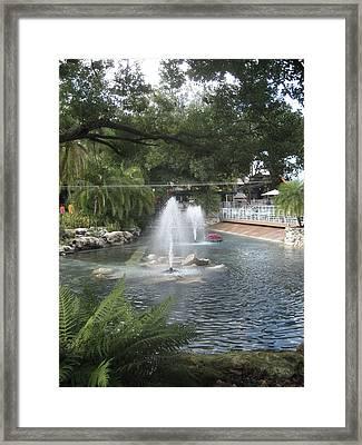 Busch Gardens Tampa - 011312 Framed Print by DC Photographer