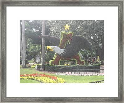 Busch Gardens Tampa - 011313 Framed Print by DC Photographer