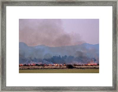 Bush Fire In British Columbia Framed Print by David Nunuk/science Photo Library