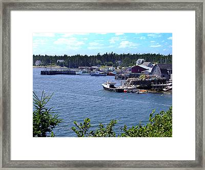 Bush Island Nova Scotia Framed Print