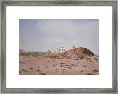 Bush Land Australia Framed Print