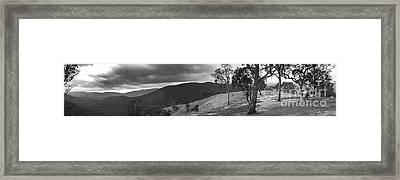 Bush Pano Framed Print by David Benson