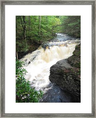 Framed Print featuring the photograph Bushkill Rapids by Richard Reeve