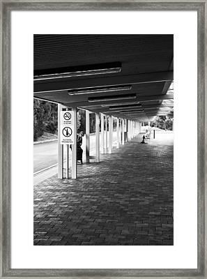 Busstop Peaking Framed Print