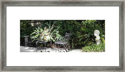 Bust In A Garden With Staghorn Fern Framed Print by Patricia Greer