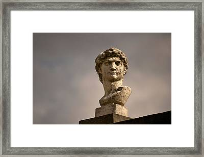Framed Print featuring the photograph Bust Of Apollo by Nadalyn Larsen