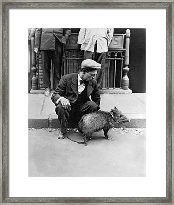 Buster Keaton With A Peccary Framed Print