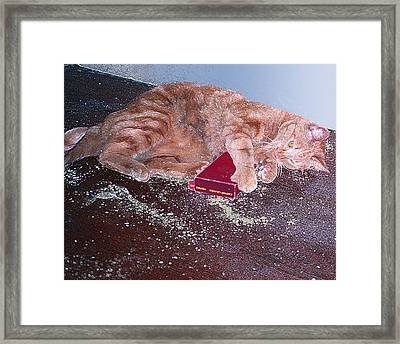 Buster Slopped-out On Catnip Framed Print