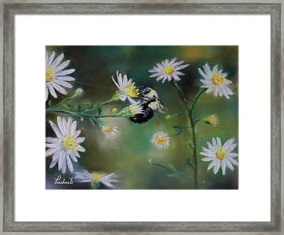 Busy Bee - Nature Scene Framed Print by Prashant Shah