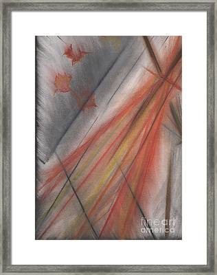 Busy Broom By Jrr Framed Print
