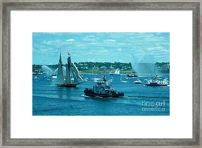 Busy Halifax Harbor During The Parade Of Sails Framed Print