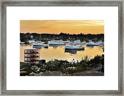 Busy Harbor Framed Print