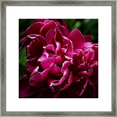 But For A Moment Framed Print