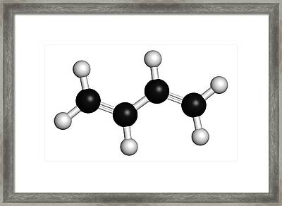 Butadiene Synthetic Rubber Molecule Framed Print