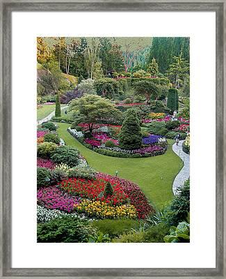 Butchart Gardens Framed Print by John M Bailey