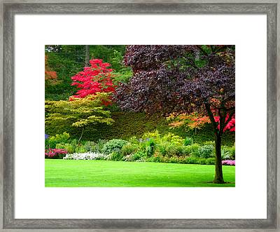 Butchart Gardens Lawn And Tree Framed Print