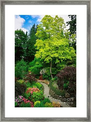 Butchart Gardens Pathway Framed Print by Inge Johnsson
