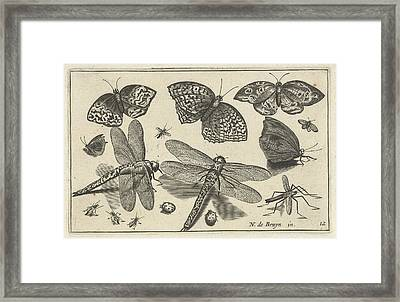 Butterflies And Dragonflies, Anonymous Framed Print