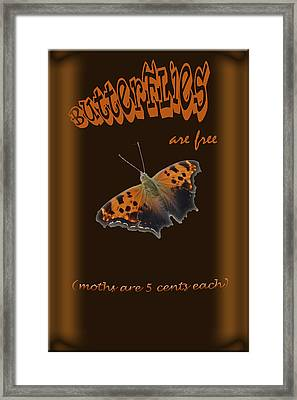 Butterflies Are Free Framed Print by Larry Bishop