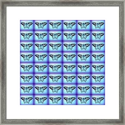Butterflies In Blue Framed Print by Cathy Jacobs