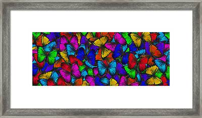 Framed Print featuring the photograph Butterflies In Flight Panorama by Kyle Hanson