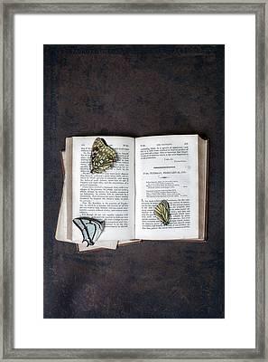 Butterflies On Book Framed Print