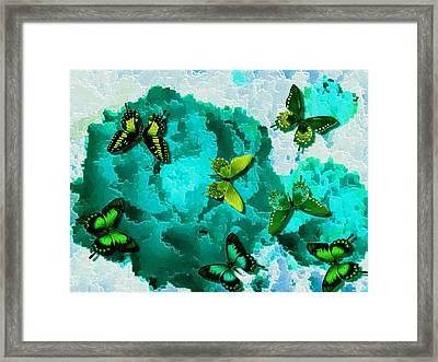 Butterflies On Teal Roses Framed Print by L Brown