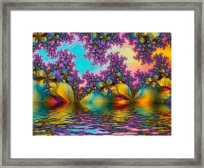 Butterfllies 3 Framed Print by Alexandru Bucovineanu