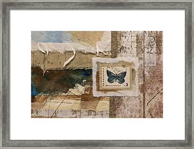 Butterfly And Blue Collage Framed Print by Carol Leigh