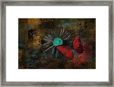 Butterfly And Daisy - 09at2b Framed Print
