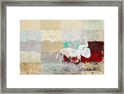 Butterfly And Daisy - 140109109w1t2a Framed Print by Variance Collections