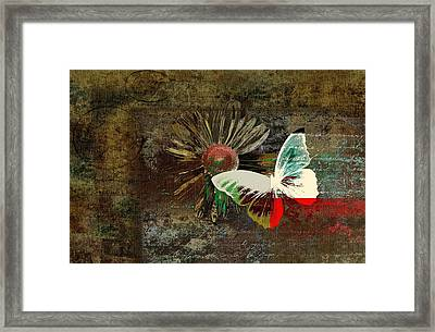 Butterfly And Daisy - M754bt Framed Print