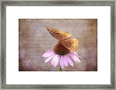 Butterfly And Flower Framed Print by KJ DeWaal
